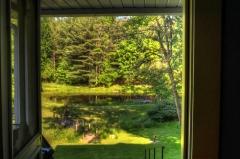 Backyard from Kitchen