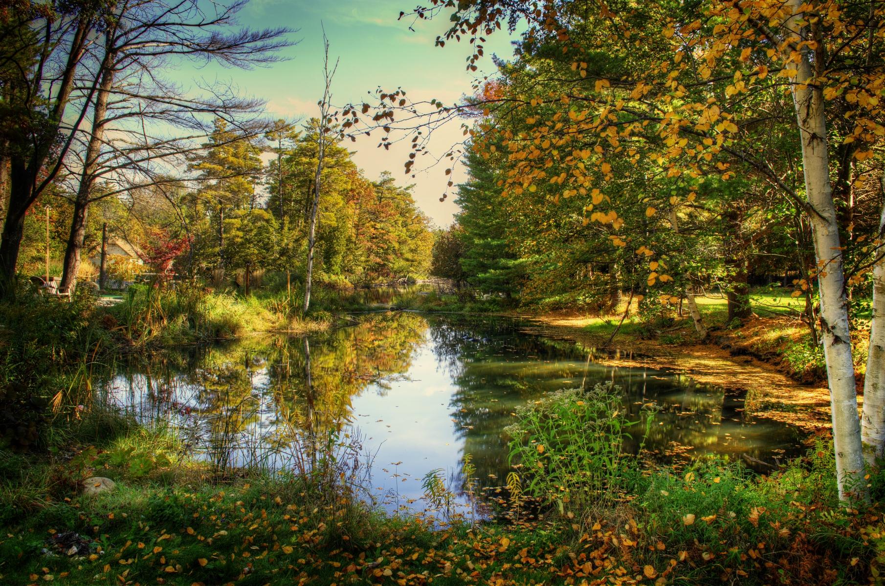 Glen Lake - Crystal River