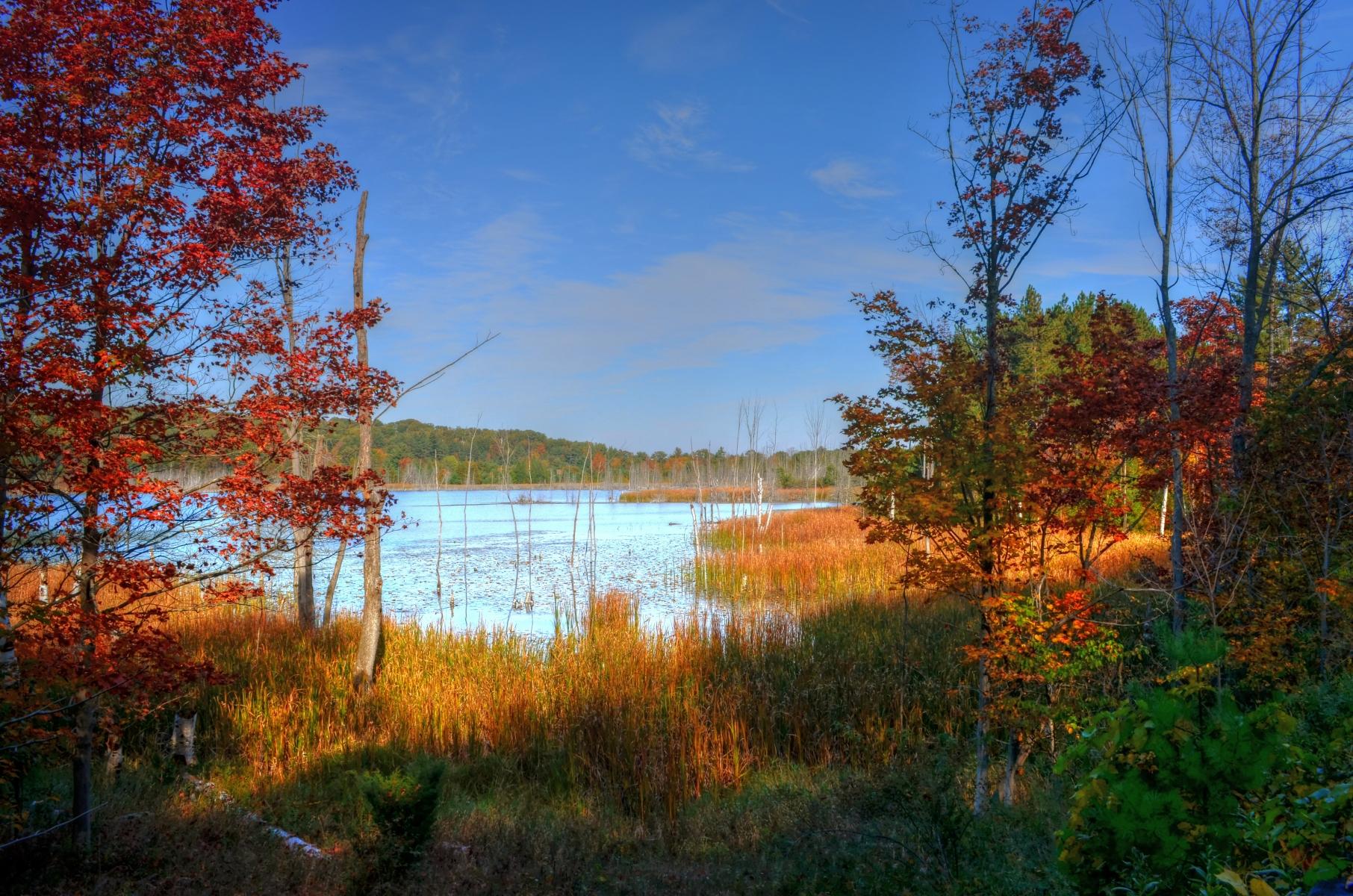 Narada Lake, Mi