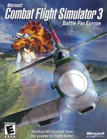 Combat Flight 3.jpg